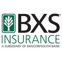 BXS Insurance Center